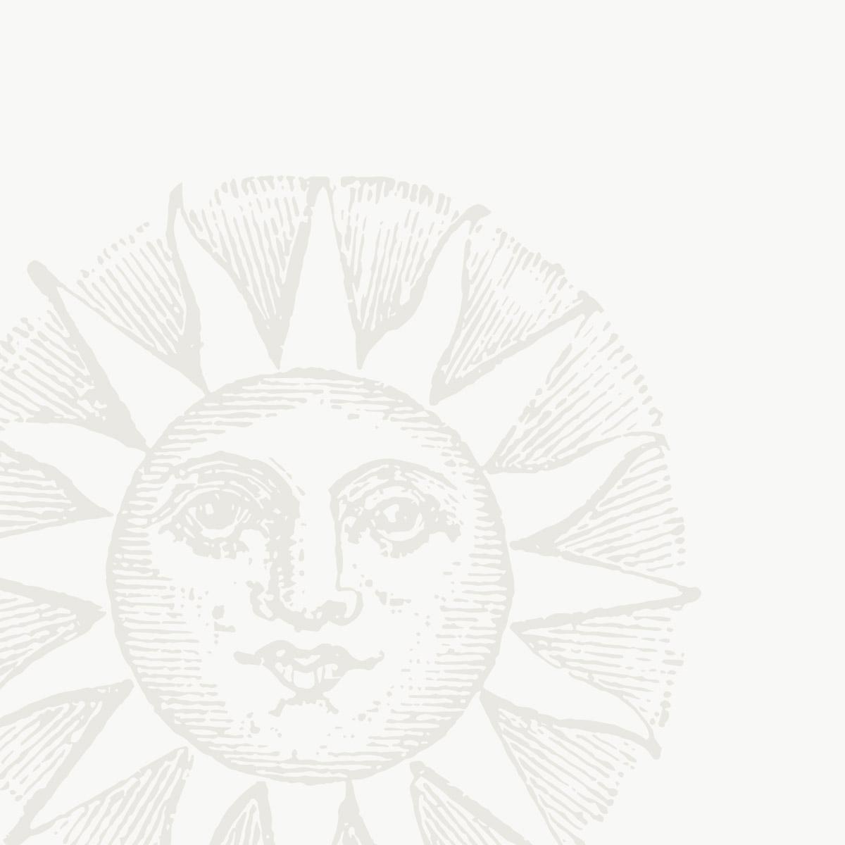 Grafica sole